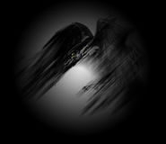 Raven. Ominous raven illustration - black bird in the circle of light Stock Photography