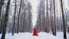 Raven che si sposta alla mano fragile della ragazza in un vestito rosso lungo video d archivio