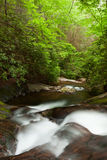 Raven Cliff Trail, Dode Creek. Royalty Free Stock Photography