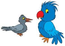 Raven et perroquet   Image libre de droits