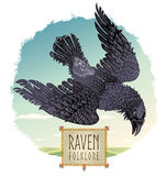 Raven. Stock Images
