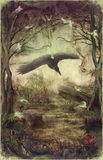 Raven flying through forest. Raven or vulture flying through  night forest Stock Images