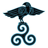 Raven hand-drawn in Celtic style. Isolated on white, vector illustration Royalty Free Stock Photo