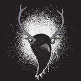 Raven Head à cornes Image libre de droits
