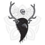 Raven Head cornuta Fotografia Stock Libera da Diritti