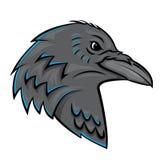 Raven Head. Eps 10  illustration Design Royalty Free Stock Photos