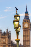 Raven on lampost at Houses of Parliament in early winter morning Stock Images