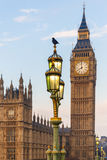 Raven on lampost at Houses of Parliament in early winter morning Stock Photography