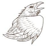 Raven portrait. Monochrome stylized raven on the white background Stock Images