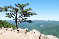Raven`s Roost Overlook, Blue Ridge Parkway Mountains Royalty Free Stock Photos