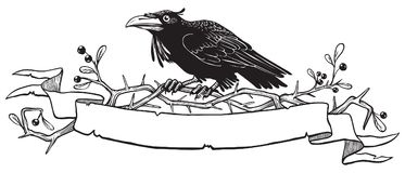 Black raven on thorn bush branch with a place for your text. Raven sitting on thorn bush branch with a scroll for text. Good for header design. Black and white stock illustration