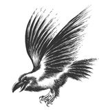 Raven Sketch Stock Photography