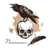 Raven and skull - Edgar Poe concept vector Royalty Free Stock Image