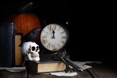 Raven Skull Midnight Fotografering för Bildbyråer
