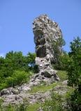 Raven stone Stock Photo