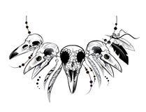 Raven Sugar Mexican Skull. Raven Skull Royalty Free Stock Photos