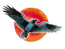 Raven and sun. Ink and watercolor illustration of a flying black raven and red sun Royalty Free Stock Photo