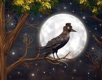 Raven in una luce della luna in una foresta scura Immagini Stock Libere da Diritti