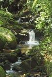 Ravene und Wasserfall Lizenzfreies Stockbild