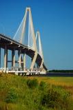 Ravenell-Brücke, Charleston Lizenzfreie Stockfotos