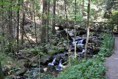 Ravennaschlucht - vattenfall för svart skog Arkivfoton