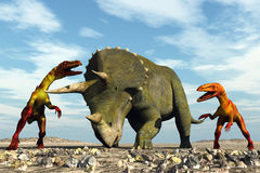 Ravenous dinosaurs. Scene two ravenous dinosaurs Executed in 3D Royalty Free Stock Photo