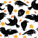 Ravens and autumn leaves Royalty Free Stock Photo
