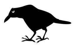 ravens den sjuka silhouettevektorn Arkivfoto