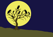 Ravens on the rampike at night Stock Photography