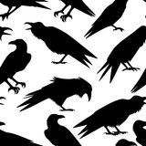 Ravens seamless pattern. Vector seamless pattern with hand drawn raven silhouettes. Beautiful design elements, perfect for prints and patterns Stock Photo