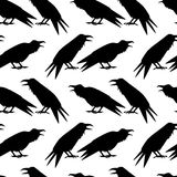 Ravens seamless pattern. Vector seamless pattern with hand drawn raven silhouettes. Beautiful design elements, perfect for prints and patterns Stock Image