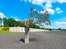 Ravensbruck Concentration Camp Royalty Free Stock Image