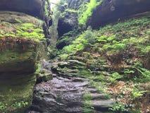 Ravin dans Malerweg dans le Suisse Saxe, Allemagne Photographie stock