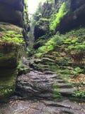 Ravin dans Malerweg dans le Suisse Saxe, Allemagne Photos libres de droits