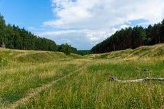 Ravin envahi d'herbe Ciel bleu avec des nuages Photographie stock
