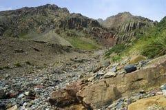 Ravina da montanha com um córrego e lotes do multicol Imagens de Stock