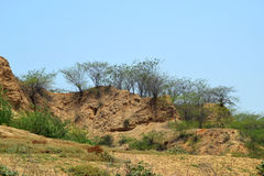 Ravinas de chambal Foto de Stock Royalty Free