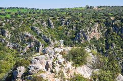 Ravine of Castellaneta. Puglia. Italy. Stock Images