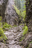 Ravine Cracow - Tatra National Park, Poland. Royalty Free Stock Photography