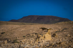 The ravine of the enchanted or lover Fuerteventura canary-island Royalty Free Stock Image