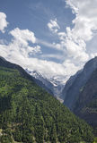 Ravine forest on slope and glacier Stock Image