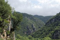 Ravine. And mountains up in the North of Greece Royalty Free Stock Images
