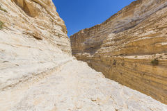 Ravine in the Negev desert Royalty Free Stock Photos