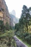 Ravine. This photo was taken in the Jingming  scenery area, Yandang Mountain,Zhejiang province,china Stock Photo
