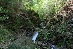 Ravine in Slovak Paradise National park, Slovakia. Ravine in Slovak Paradise National park in Slovakia royalty free stock photo