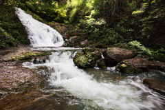 Ravine stream in the Black Mountain Valley. Beautiful high ravine stream in the Black Mountain Valley Royalty Free Stock Image