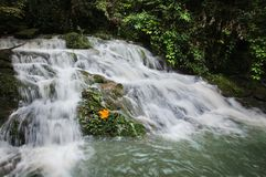Ravine stream in the Black Mountain Valley Stock Photography