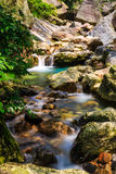 Ravine stream and pool Stock Image
