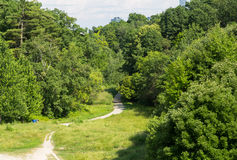 Ravine in Toronto Stock Photography