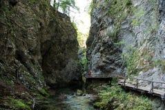 Ravine trail Royalty Free Stock Photo
